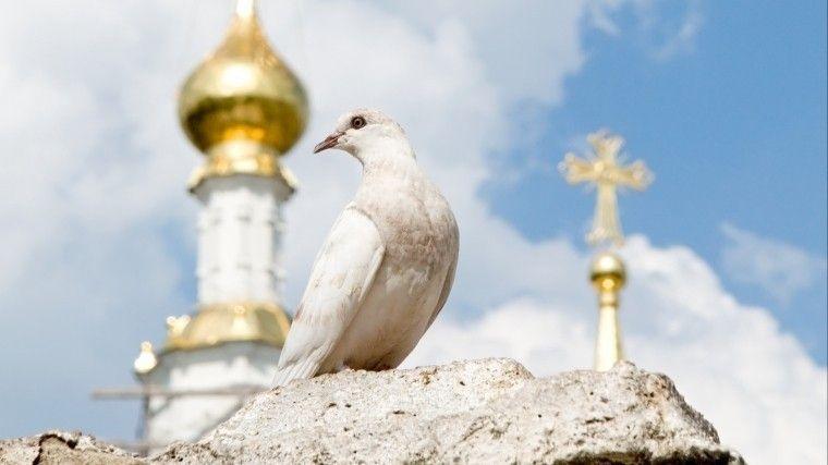 Что означает праздник Троица: приметы и традиции христиан