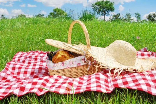 Как отпраздновать День дачника: традиции и обычаи